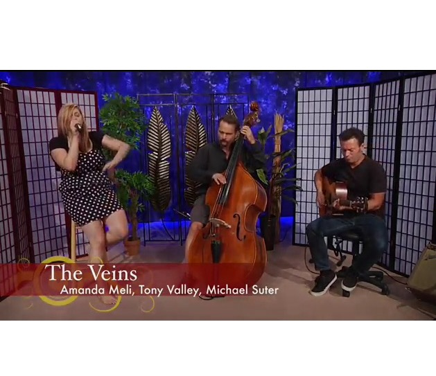 """The Veins"" Recreating classic hits and creating originals with a soulful twist."