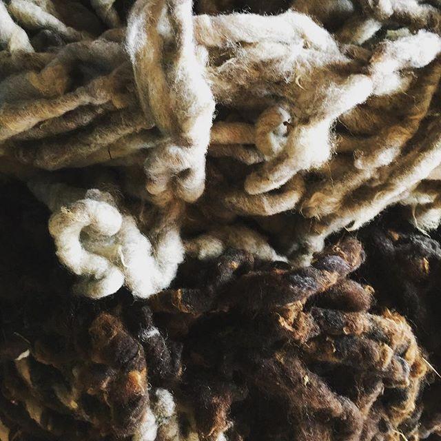 Nuevos materiales / new materials #chiloeisland  #chiloe #islachiloe  #lana  #whool