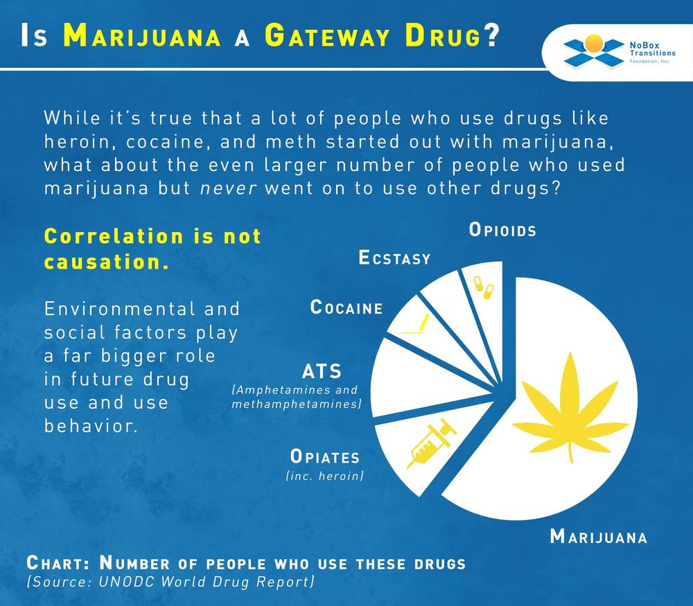 Marijuana as gateway drug