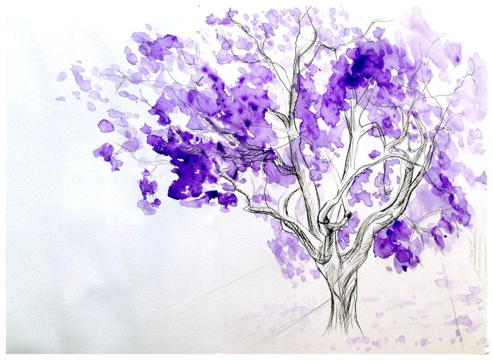 Jacaranda Tree watercolour.jpg
