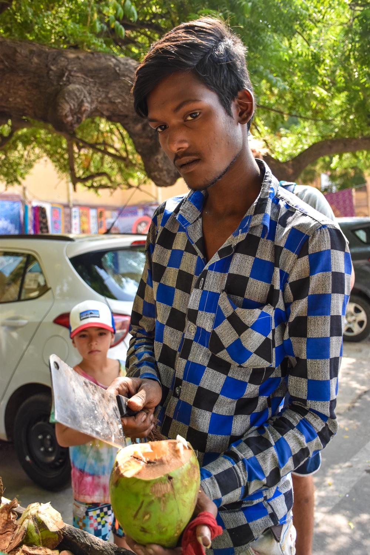 coconuts_jaipur_india