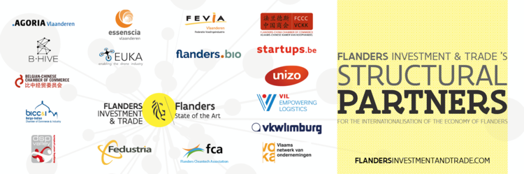 B Hive Joins Forces With Fit To Support The Internationalization Of