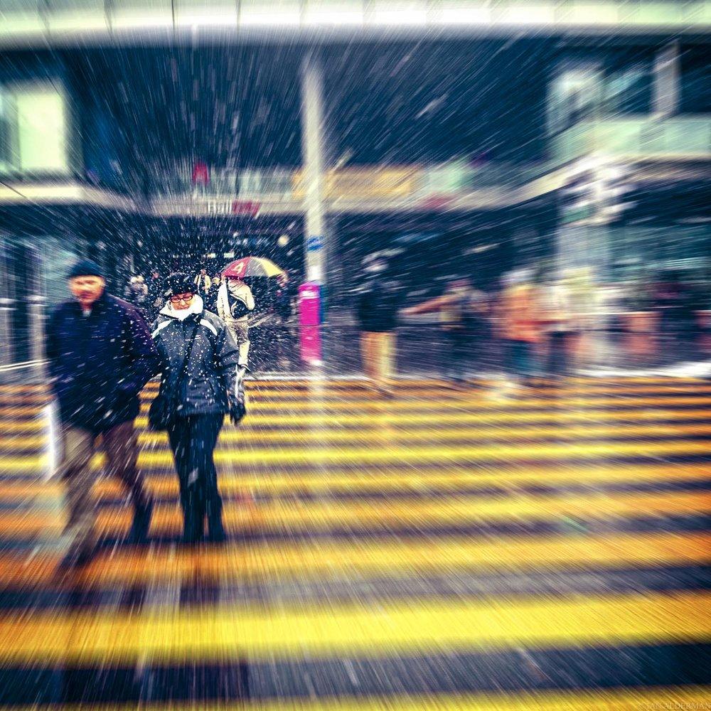 I_01.jpg