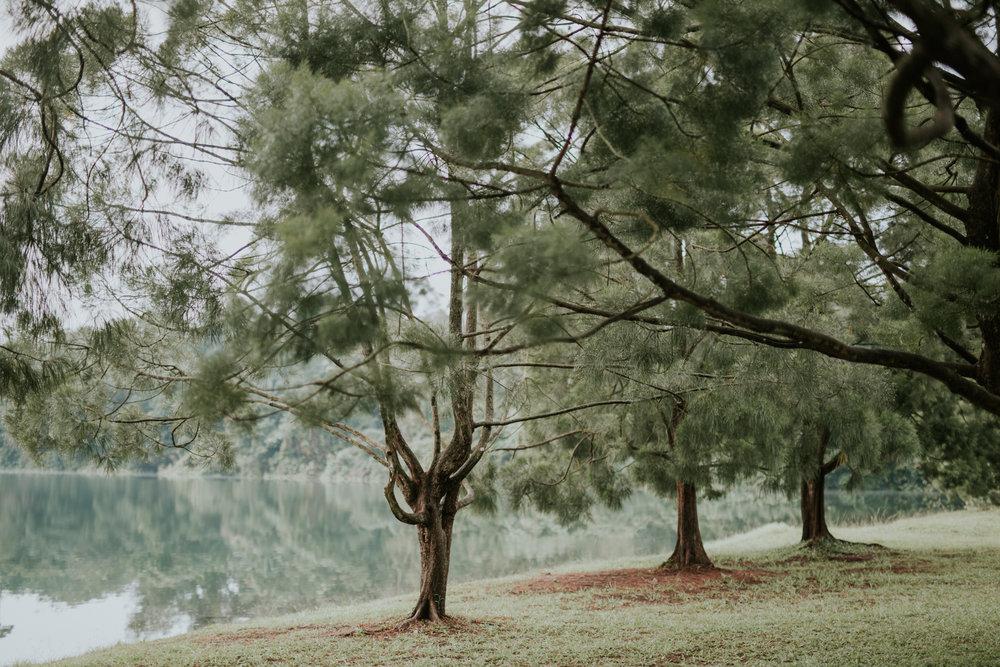 De Ming x Jasmine-1.jpg