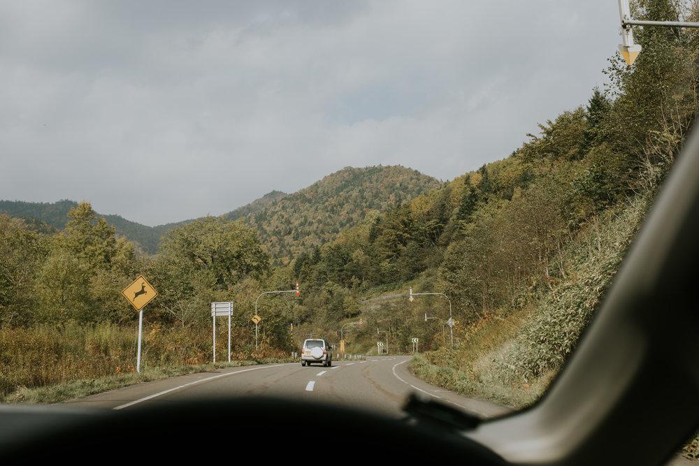 Tim + Clara (Hokkaido)-291.jpg