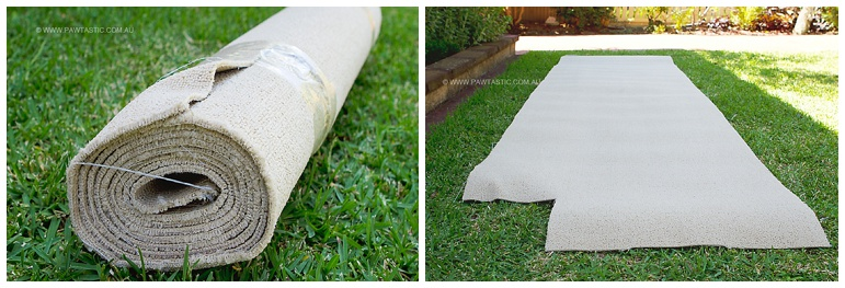 carpet offcuts for a cat tree sydney nsw