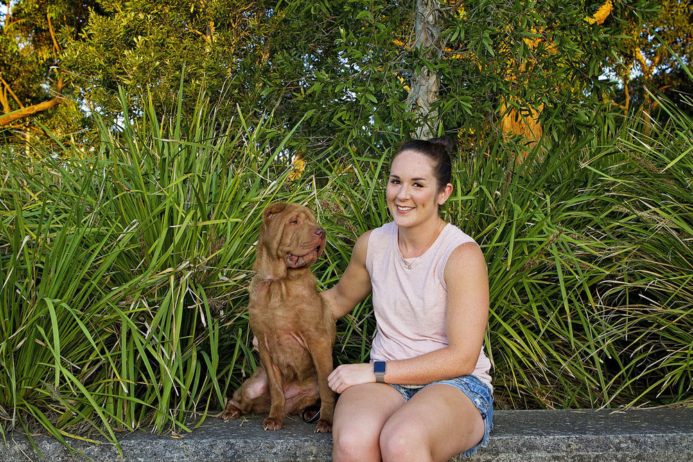 golden labrador retriever dog walks along boardwalk with woman in a white shirt and grey shorts at Sydney Park