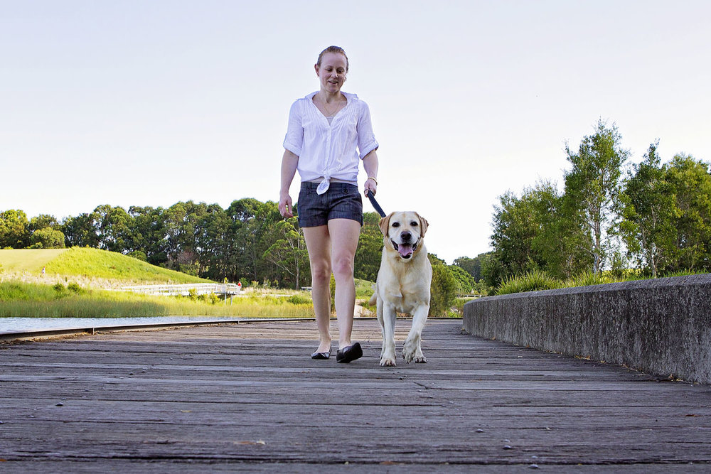 Professional pet portraits taken of golden labrador dog and owner at Sydney Park boardwalk | Pawtastic Photography