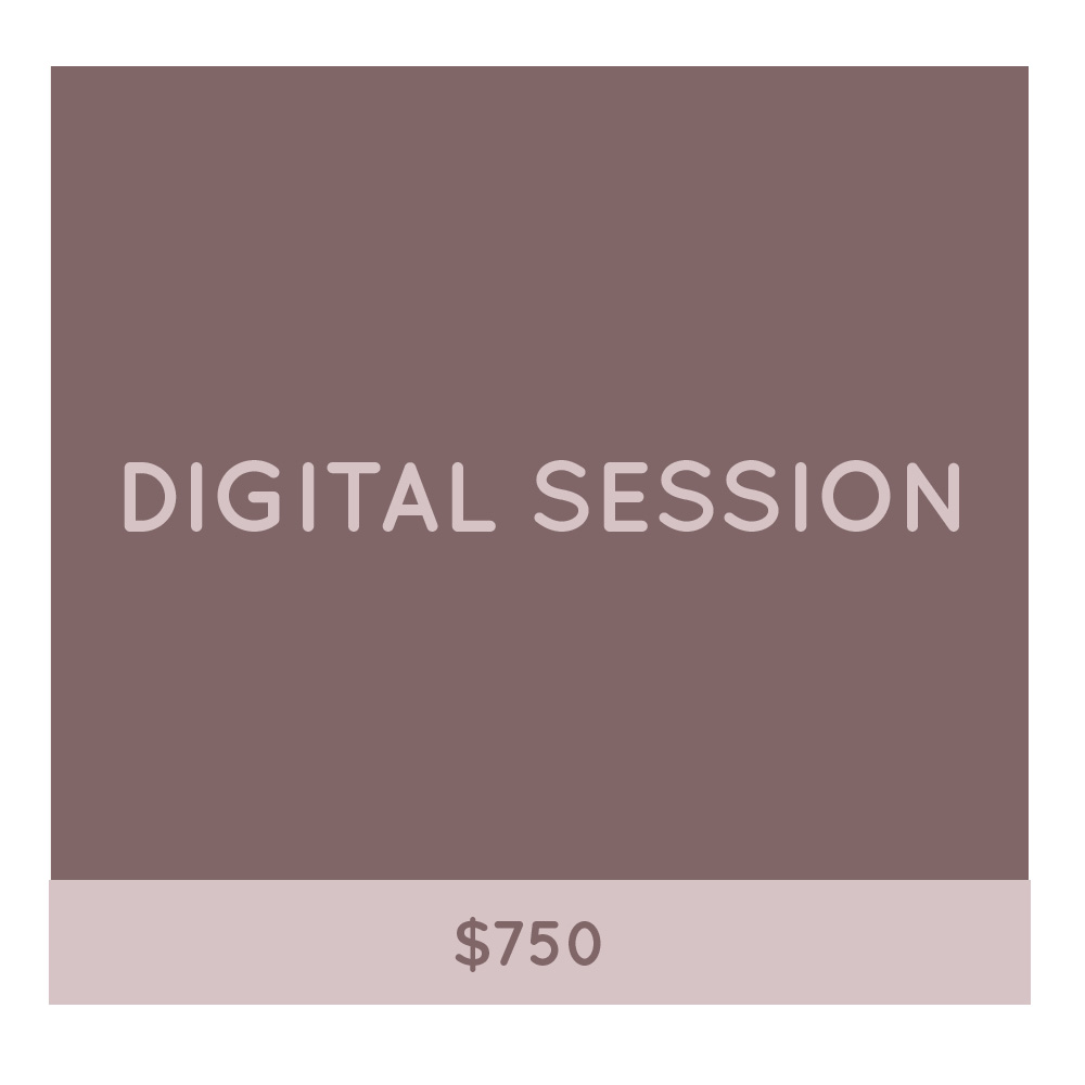 Digital Session pricing at Pawtastic Photography