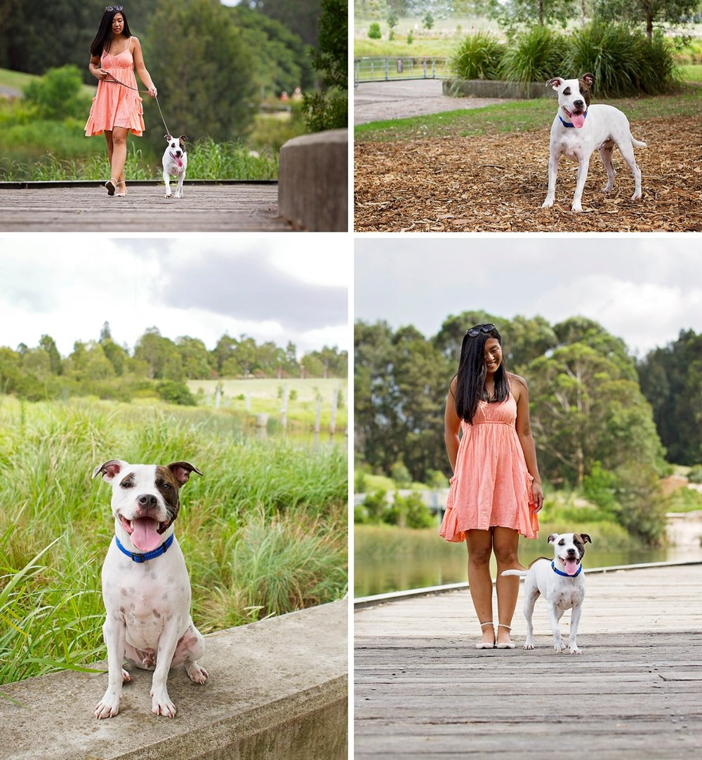 Check out the spots on Axl, the Staffy cross dog who took part in the Dog days of Summer with his mum for Pawtastic Photography - Sydney pet photographer