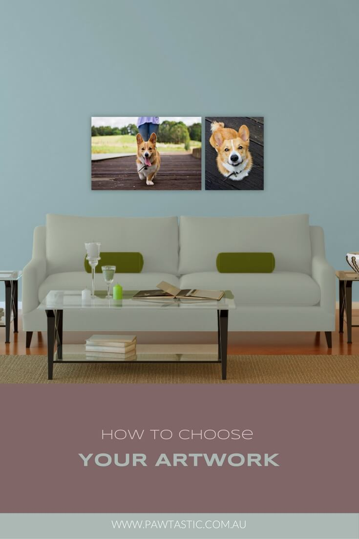 How to choose your artwork from your professional pet photography session with Sydney based photographer, Pawtastic Photography.