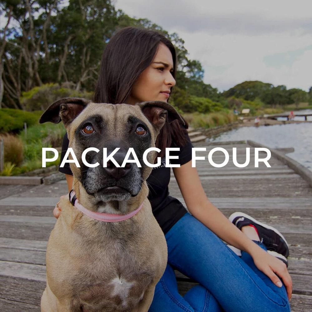 Digital-package-number-four.jpg