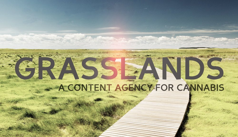 grasslands header experiment1.jpg