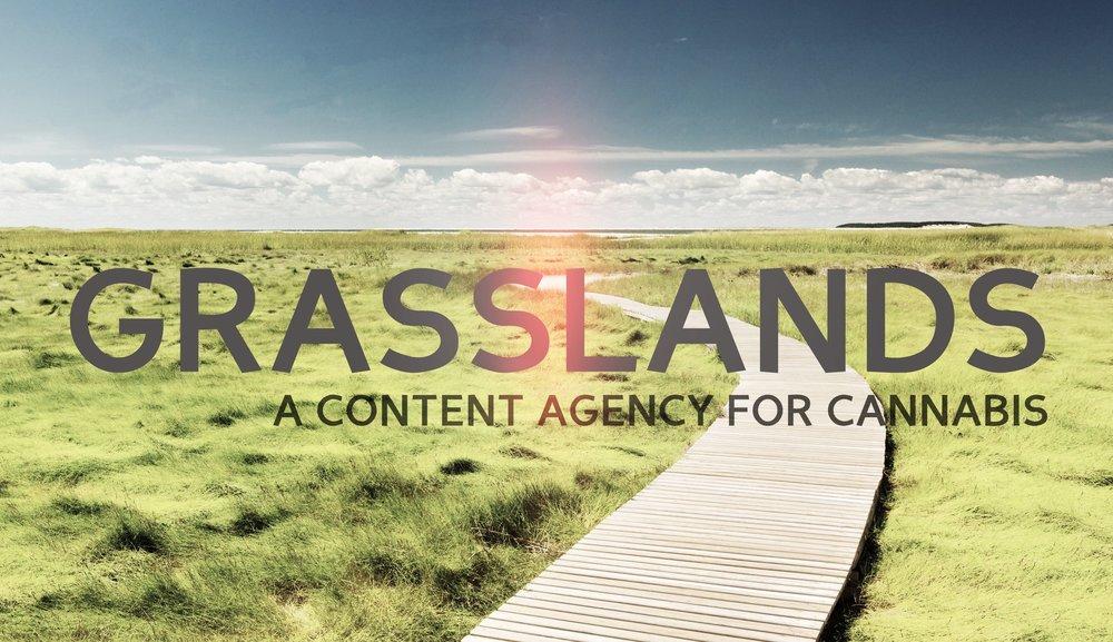 grasslands header experiment1.jpg