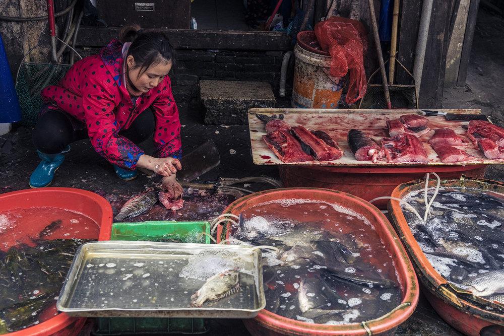 suzhou_market_scaling_fish