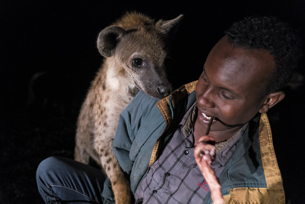 Hyena_04409.jpg