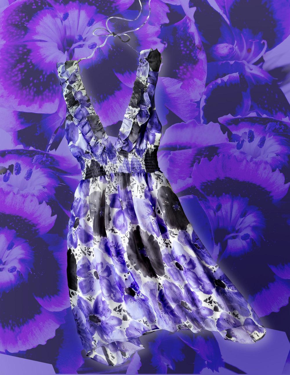 PurpleDressWind.jpg