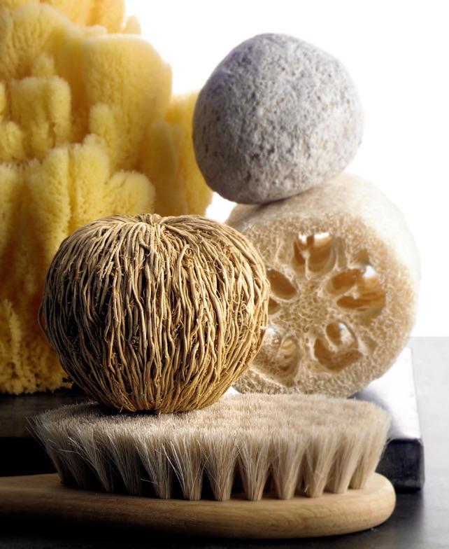 MF.Sponges&Brushes.jpg