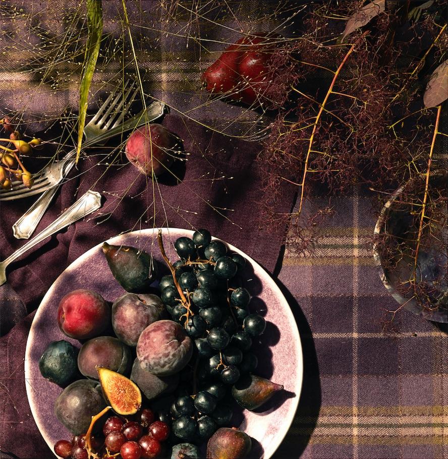 ST.Figs&Plaid.jpg