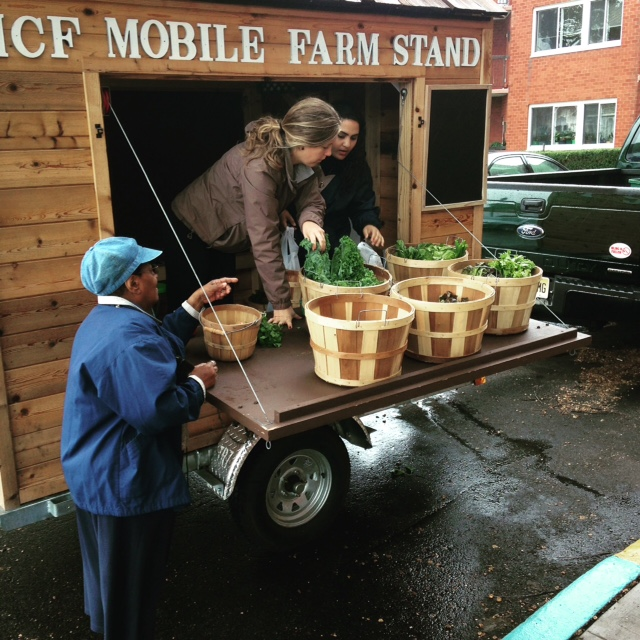 farmers and 4-H youth in action at senior site in Montclair 2016.jpg