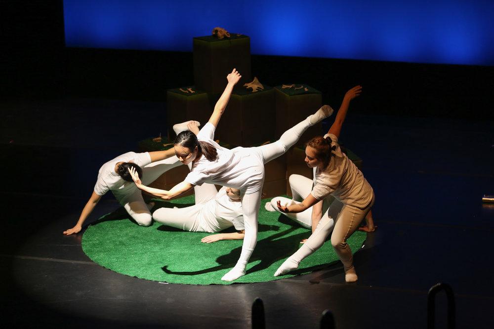 Motion Dance_1.jpg