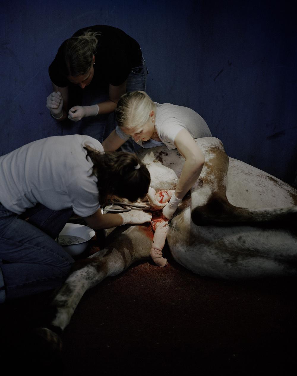 "Yann Mingard, de la série ""Deposit"", 2010"