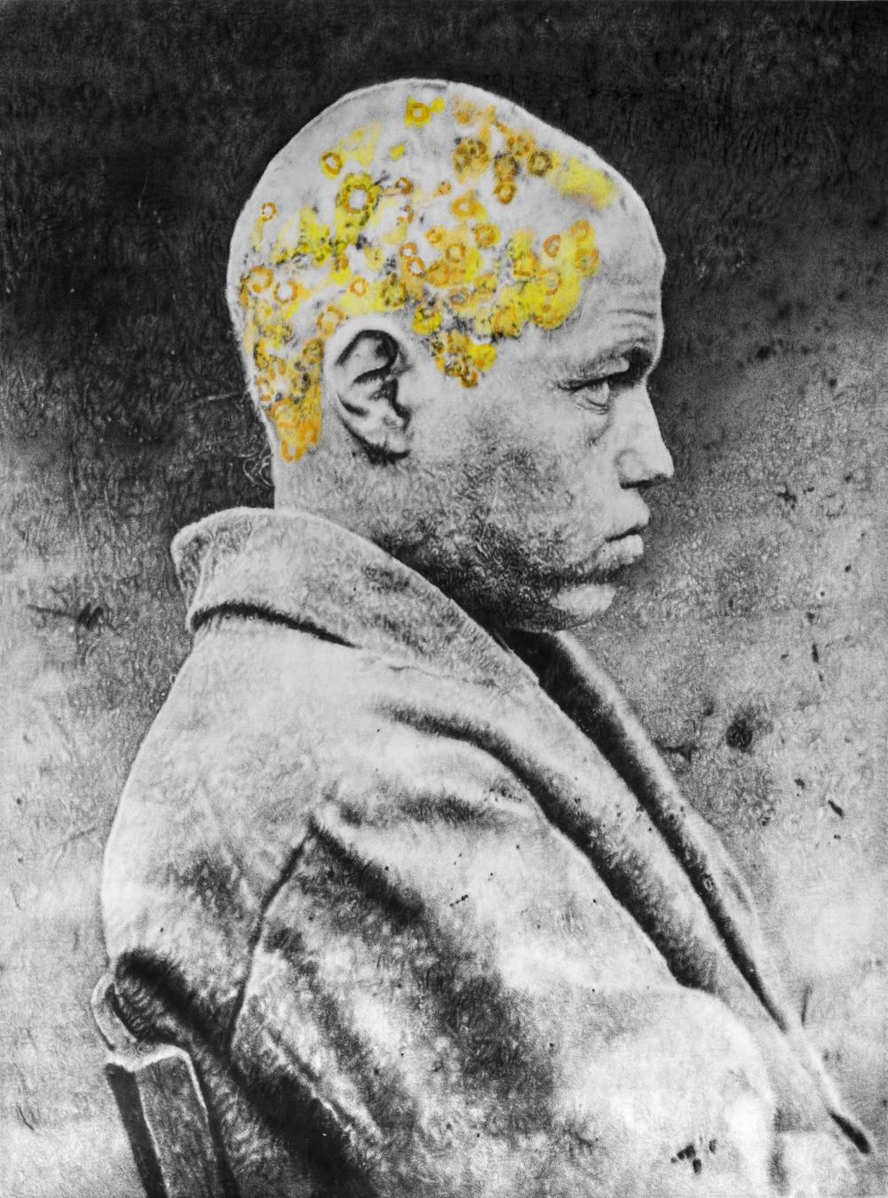 """Éric Manigaud, """"Favus"""", 145 x 193 cm, 2015"""