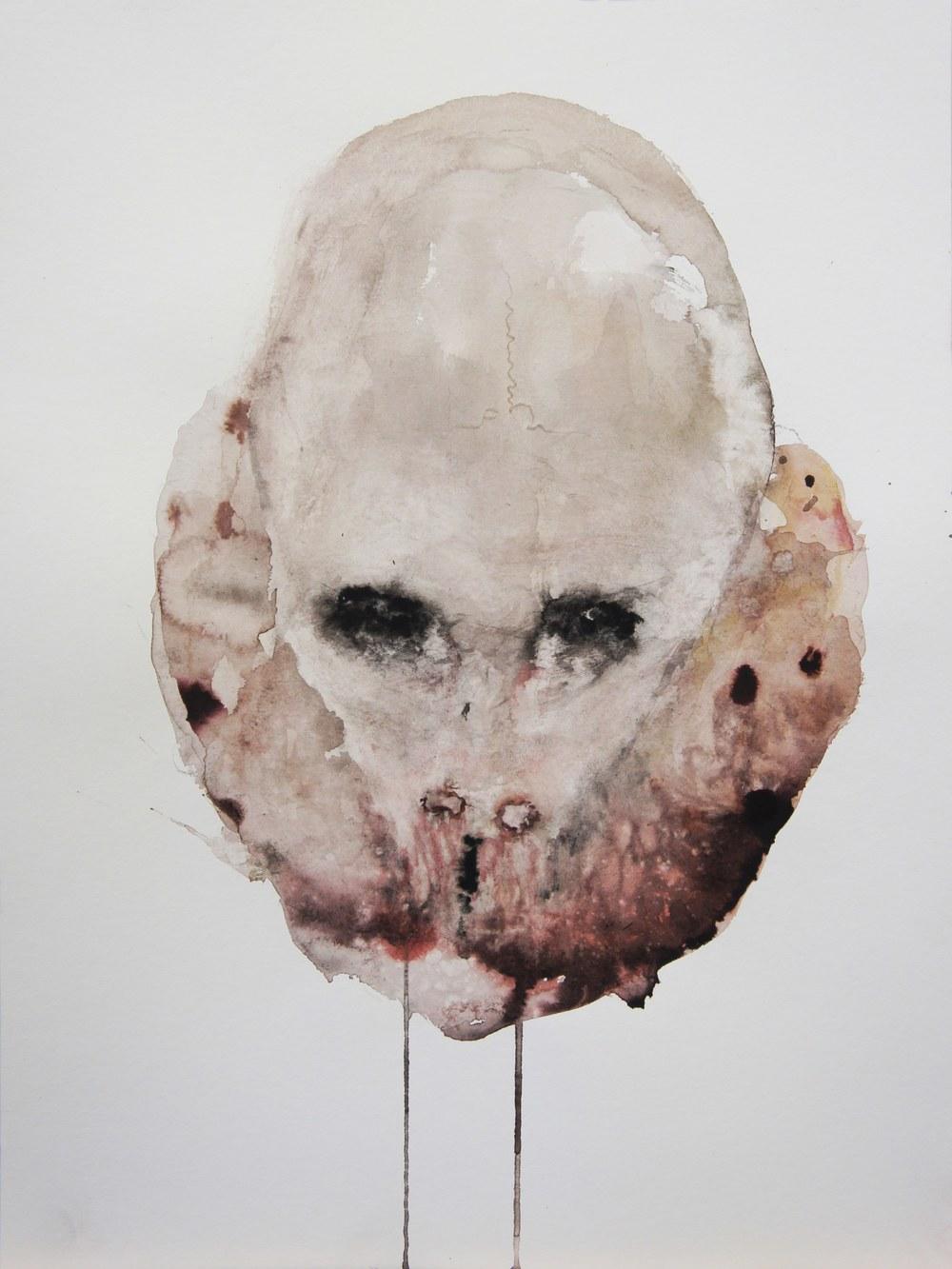 """Guy Oberson, """"Crâne animal, 8.4.15"""", aquarelle sur papier bambou, 42 x 56 cm, 2015"""