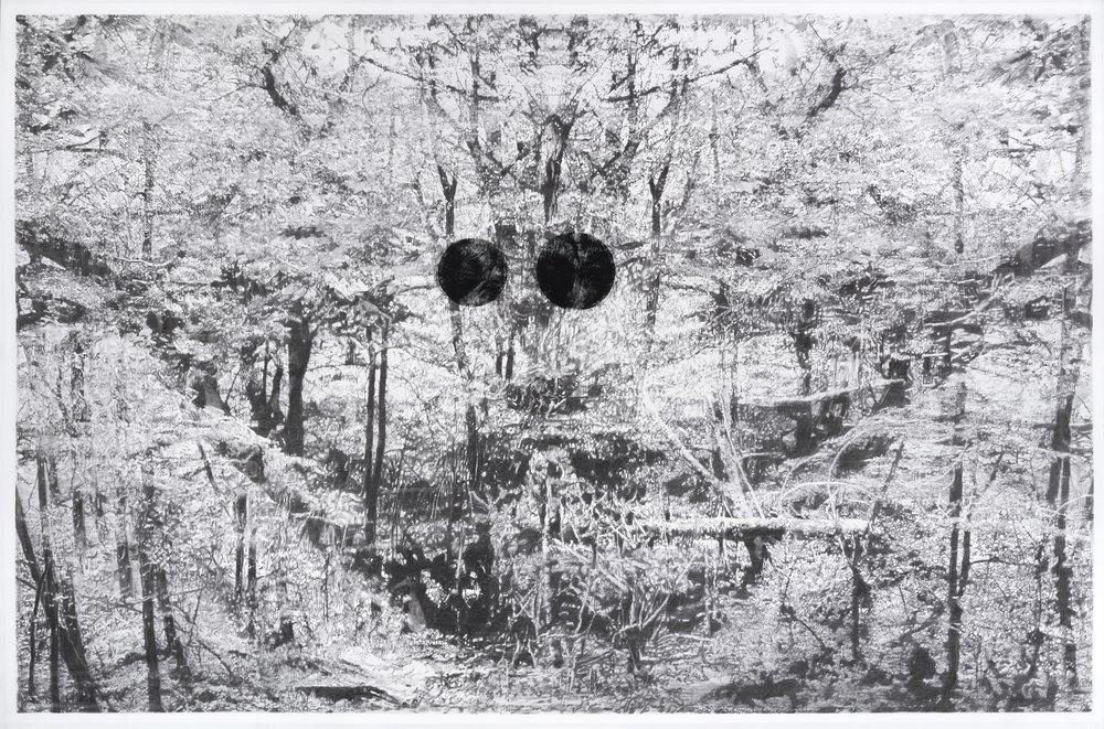 "Alain Huck, ""Momus III"", fusain sur papier, 230 x 152 cm, 2016"