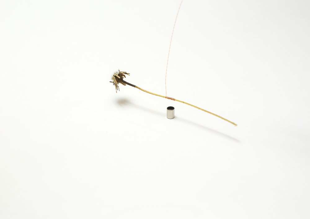 "Rudy Decelière, ""Ce besoin d'incertitude"", 2017 (extrait d'installation)"