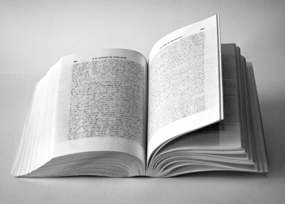 """Jérémie Bennequin, """"Tom(b)e, Le Côté de Guermantes"""", livre de la collection blanche effacé à la gomme encre,20,5 x 14 cm, 2011"""