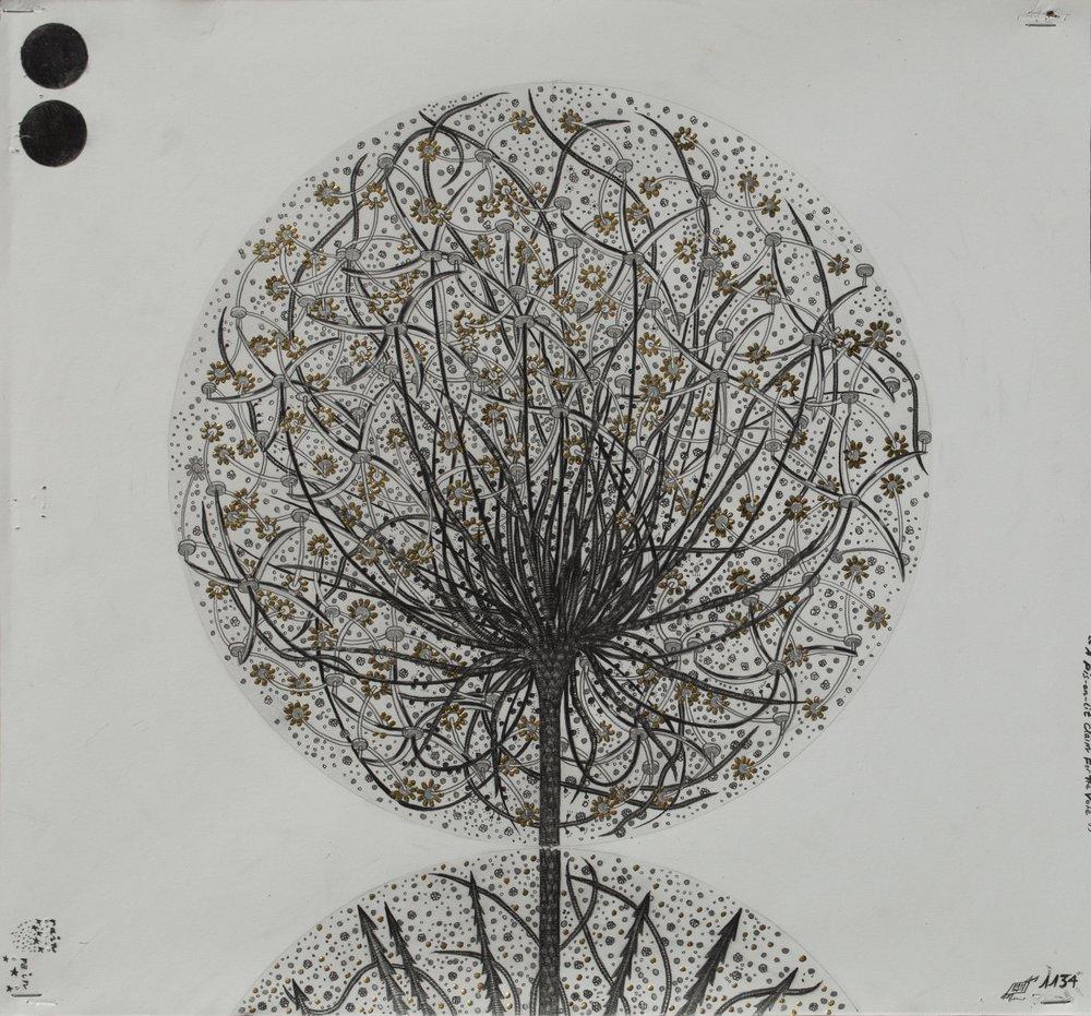 """© Hipkiss, """"1134 - Capitule 9"""", 40x36 cm, mine de plomb, encre argentée et feuille d'or blanc sur papier Fabriano 4, 2018, Courtesy Galerie C"""