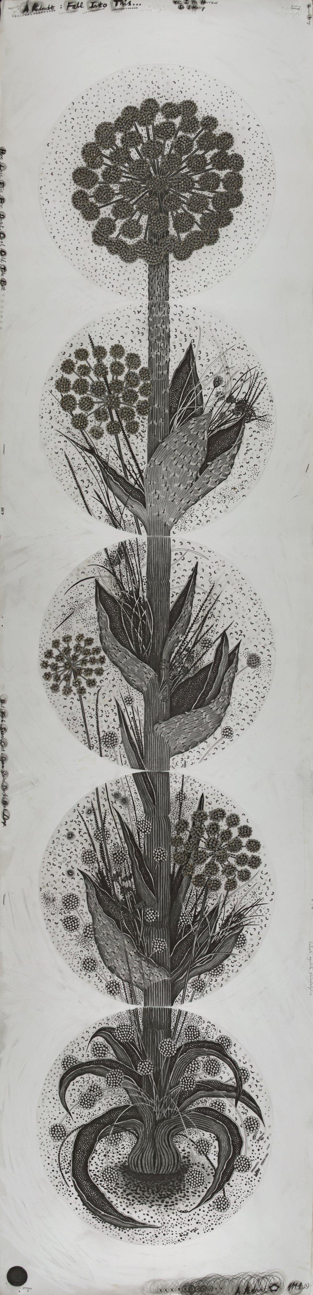 """© Hipkiss, """"1141- Instar 2"""", 165x40 cm, mine de plomb, encre argentée et feuille d'or blanc sur papier Fabriano 4, 2018, Courtesy Galerie C"""
