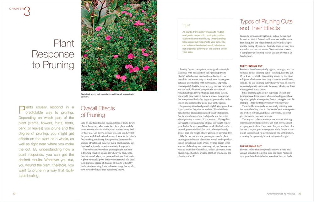 Pruning_p22-23.png