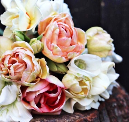 Tulip-bouquet-Botanika (1).jpg