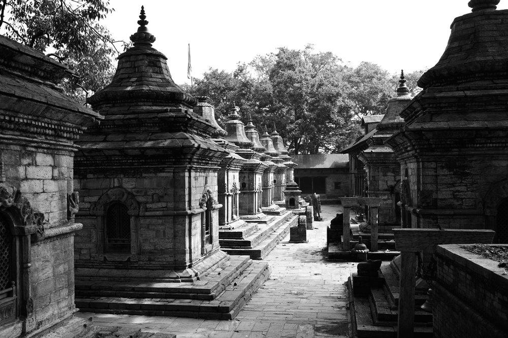 JDeLeo-Pashupatinath.jpg
