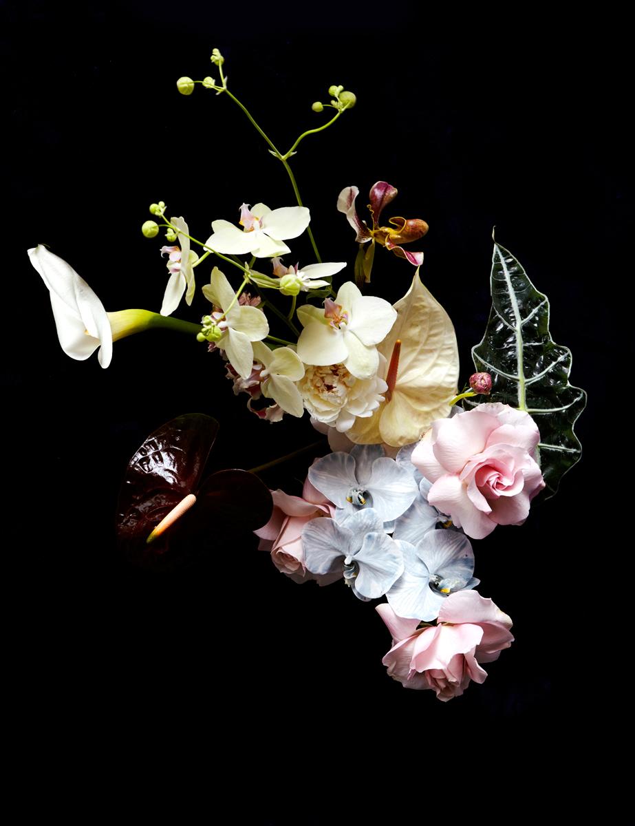 JosephDeLeo-Floral-092-v2.jpg