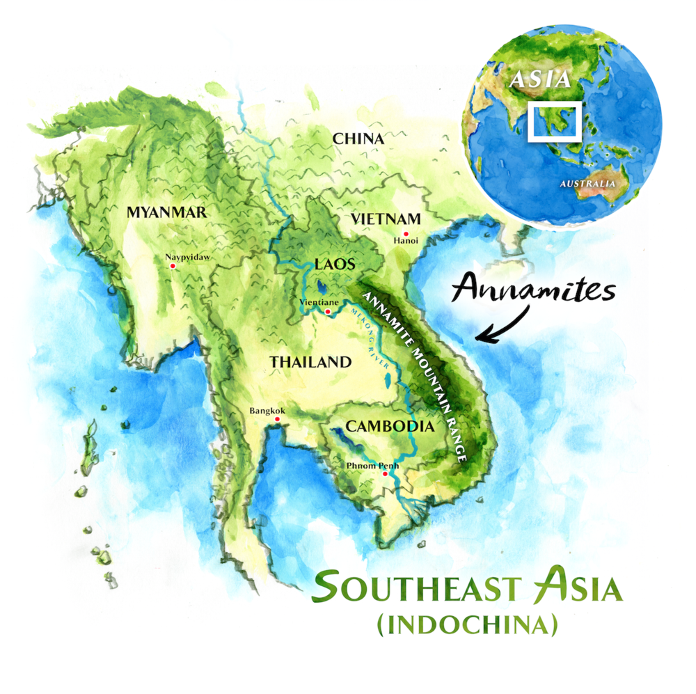 Mountains In Vietnam Map.Wonders Of The Annamites Field Notes Wonders Of The Annamites