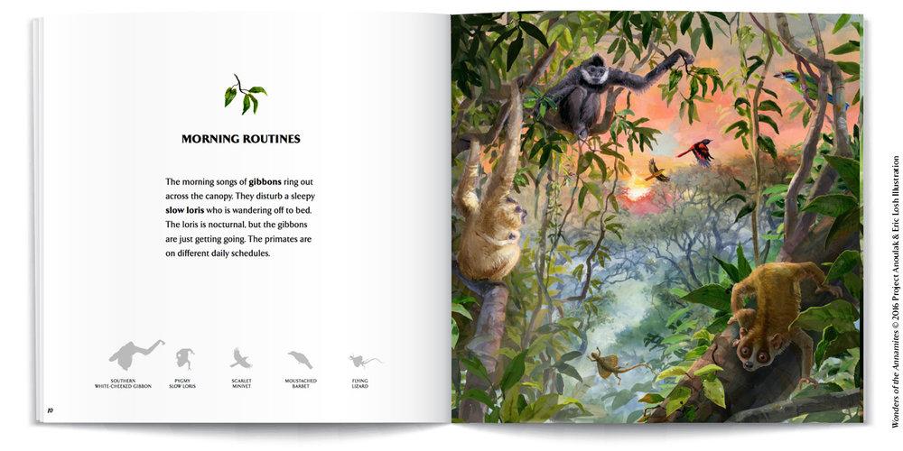 InsidePages-mockups-gibbons.jpg