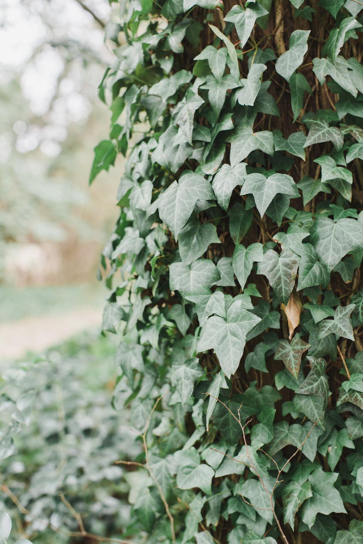English Cottage Elopement Shoot-0376.jpg