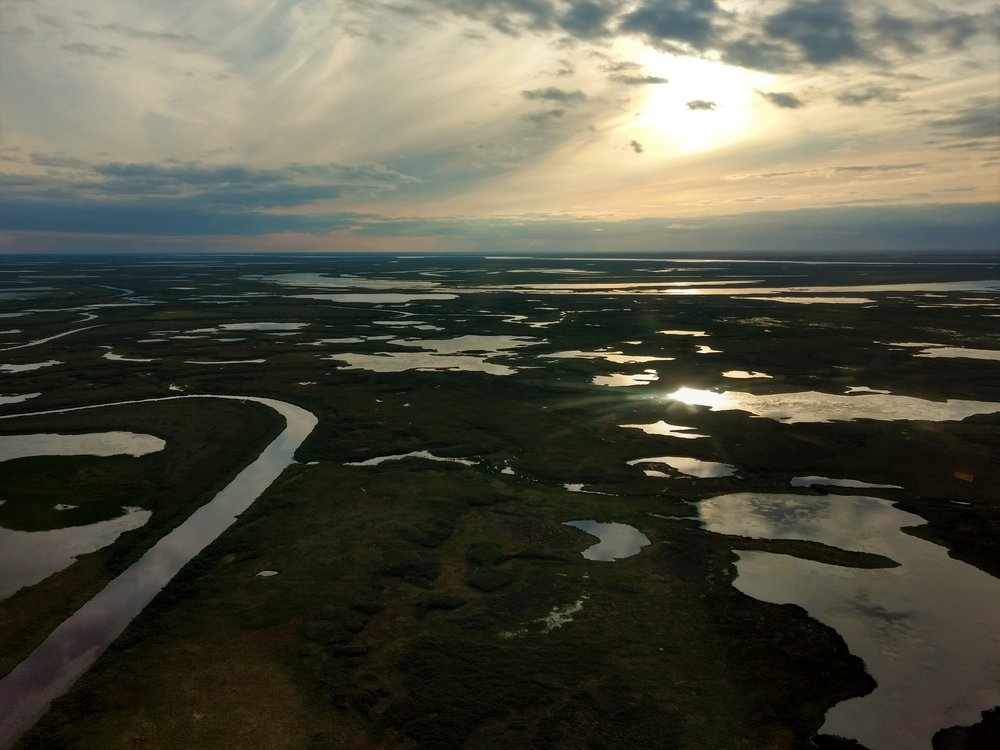 Morning sun on the Kuskokwim plain.  Photo Credit: Andy Robertson