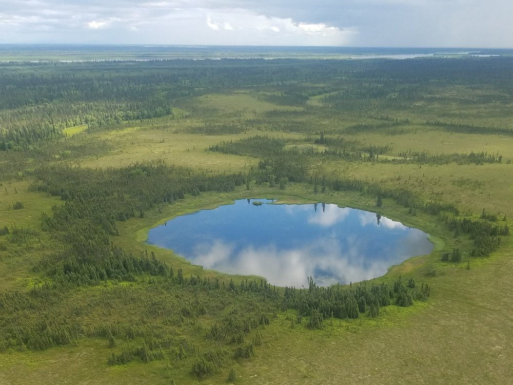 One of thousands of shallow ponds and lakes we viewed from above within the Kuskokwim River drainage.