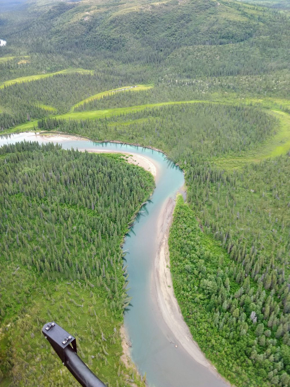 The beautiful blue water of the Aniak River (an important salmon-producing tributary of the Kuskokwim River) and the meander scar wetlands in the background.  Photo Credit: Andy Robertson