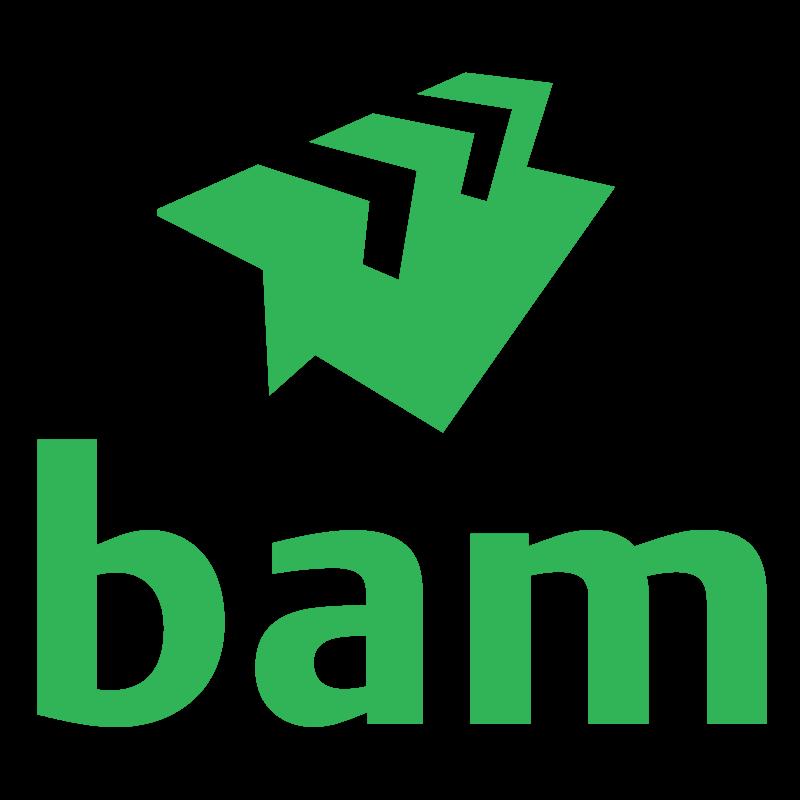 BAM is een Europese bouwgroep, voor wie duurzaamheid een kernwaarde is. Op dit moment bouwen ze aan de wegen in Amsterdam-Noord. Het oude asfalt uit de Klaprozenweg wordt hergebruikt als fundering voor de Biogasboot. Dit als alternatief voor een CO2-intensieve betonfundering.