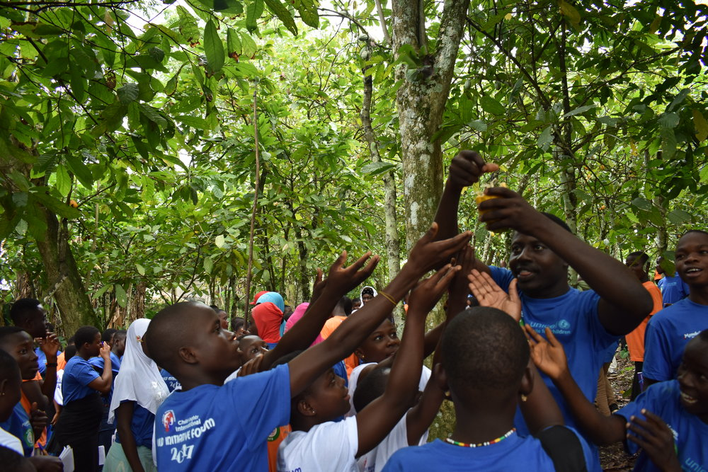 Participants taste cocoa from Tetteh Quarshie's Farm