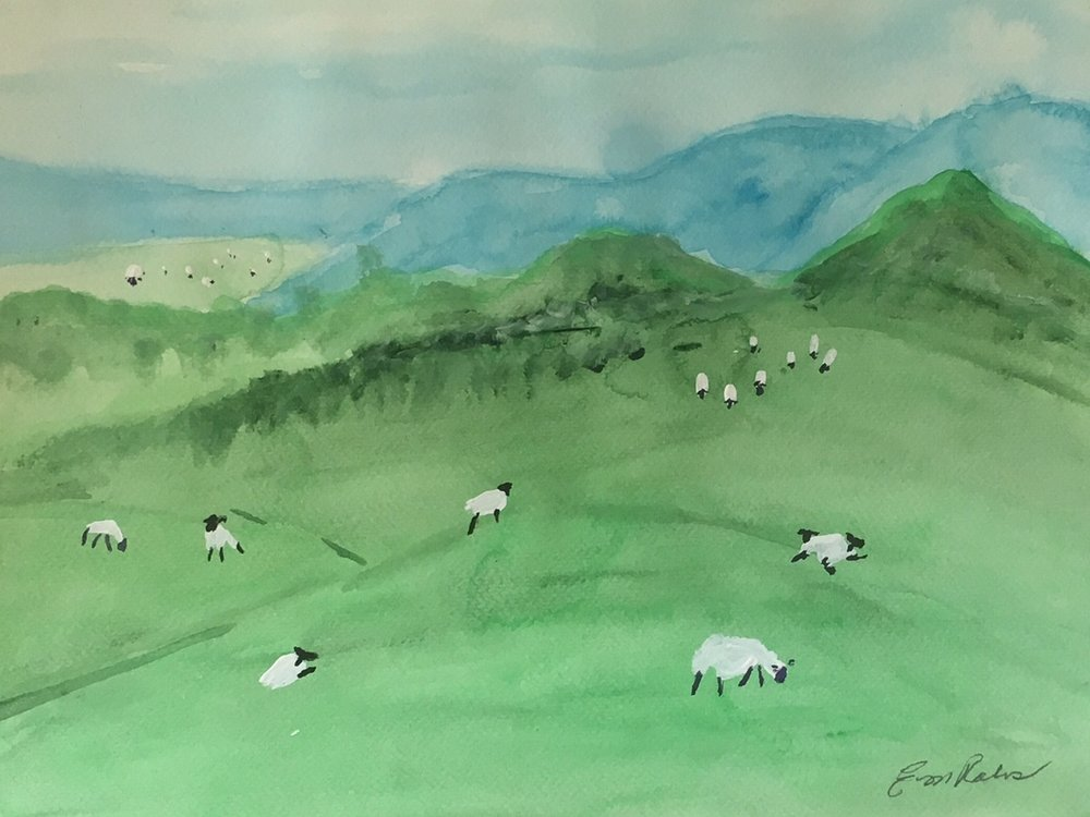 Hills and Sheep.jpg