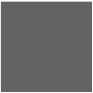 logo_EPA_white grey.png