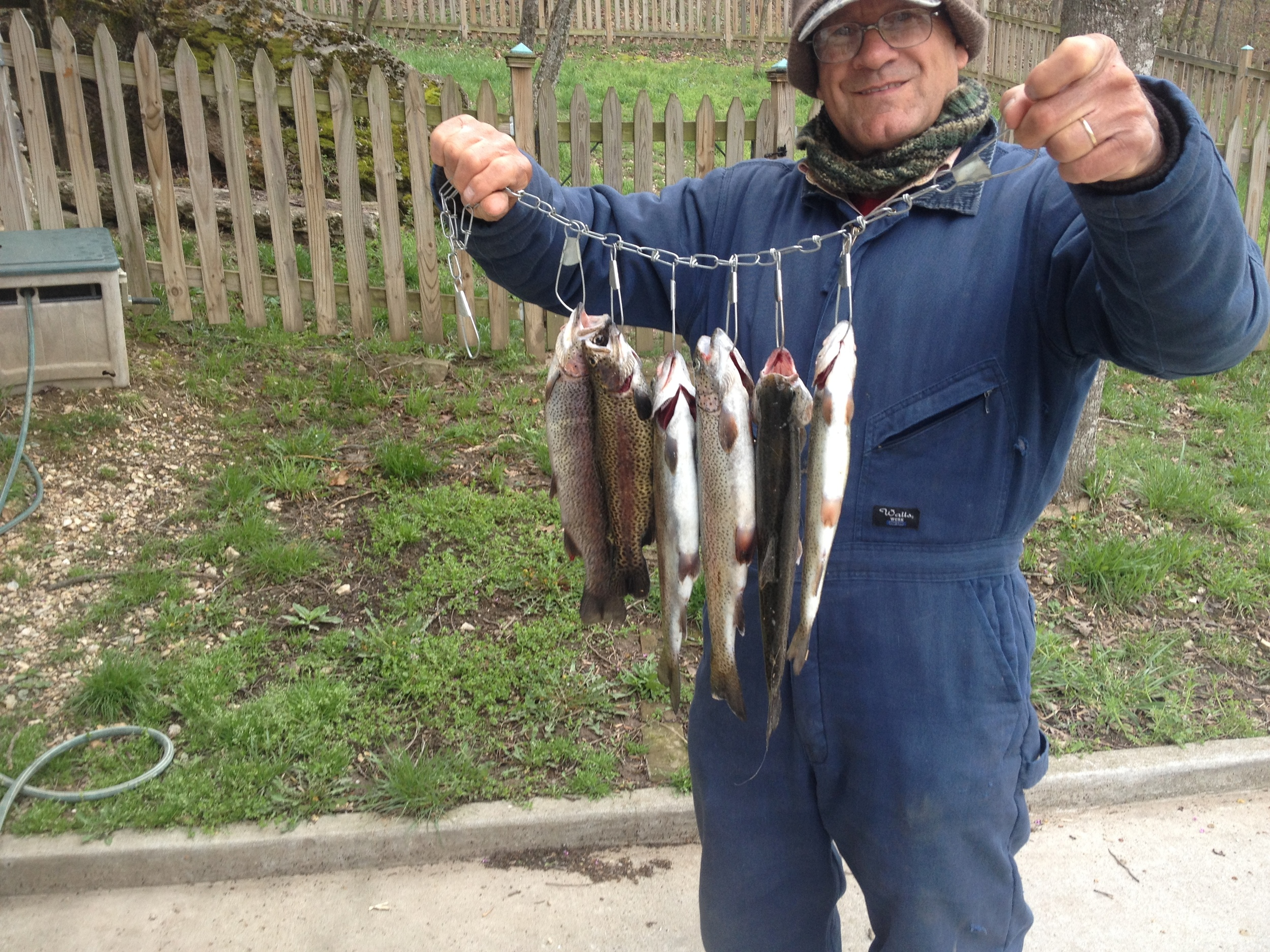 two fishermen + one hour = six healthy-looking trout