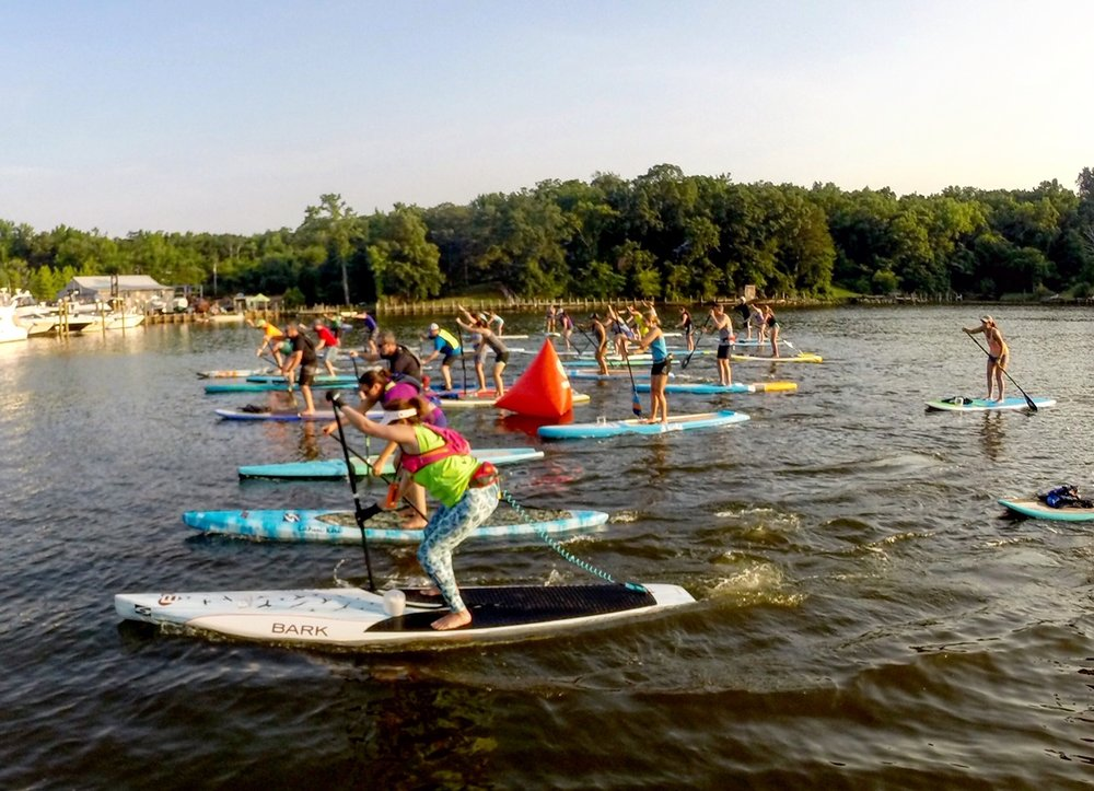 stand up paddle race annapolis
