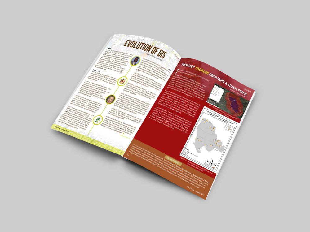 LICJNews-Ebook-Newsletter-Creative-Graphic-Designer1-CareyLeeDixon.jpg